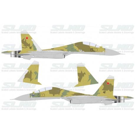 Su-30MK No:603