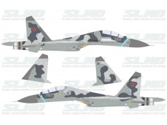 Su-30KN No:302