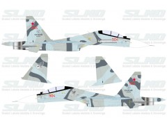 Su-30M2 Red 504