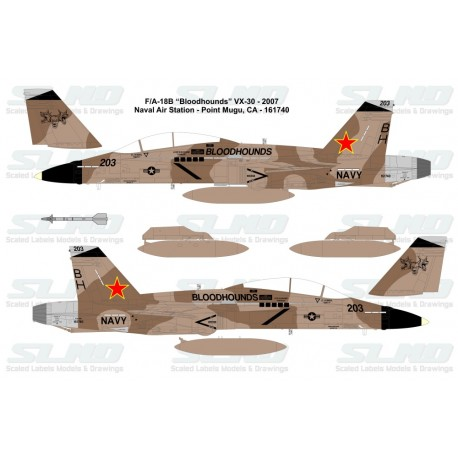"F/A-18B ""Bloodhounds"" VX-30 - 2007, NAS Point Mugu, CA - 161740"